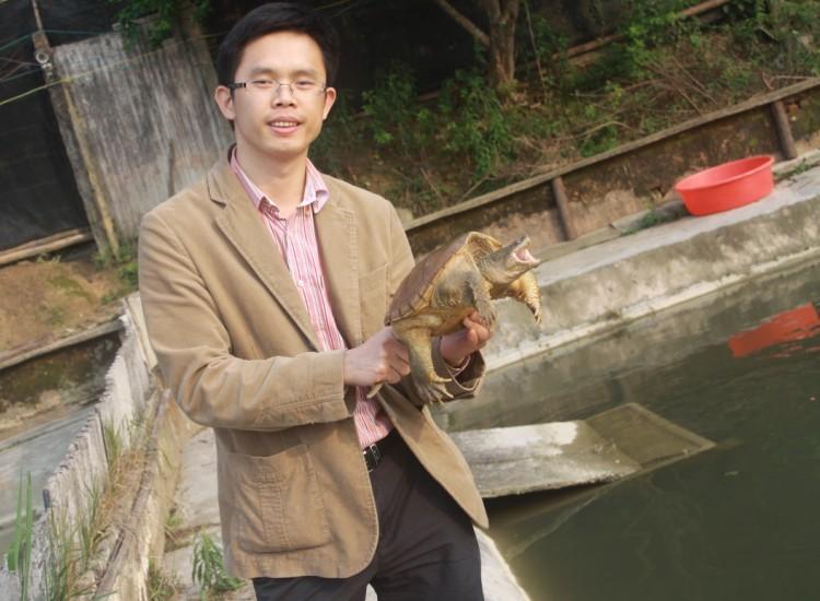 佛鳄龟种龟奇货可居,广东存量不足5000只