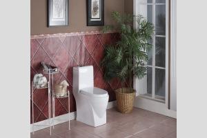 [诺珂] 现代风格 陶瓷坐厕 连体座便器 虹吸式马桶