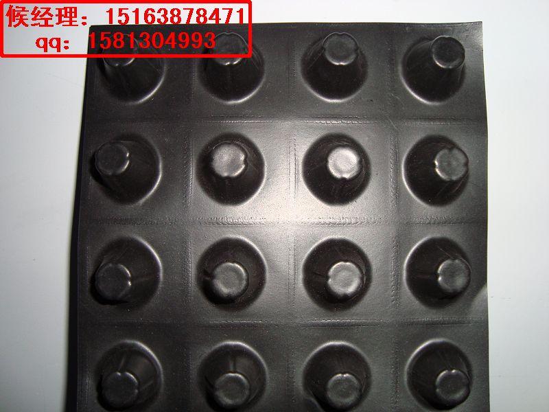 泰安厂家供应2.0cm排水板到烟台