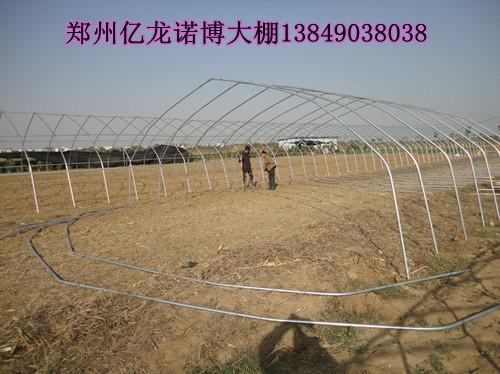 焦作钢结构无支柱大棚骨架 南阳蔬菜大棚温室建造