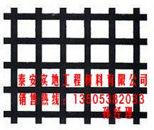 北京:钢塑复合土工格栅厂家有惊喜