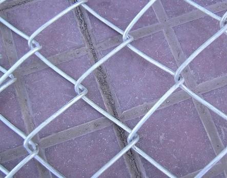 勾花网|菱形勾花网|养殖用勾花网