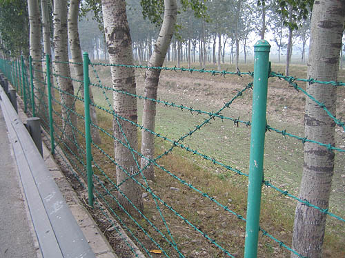 优质框架护栏 低价框架护栏 首选腾旭