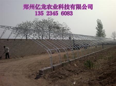 郑州蔬菜拱棚建造种植大棚骨架 南阳大棚产品材料