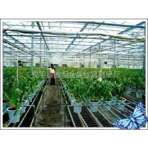 苗床网|花卉苗床网|温室骨架网