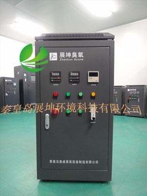 GMP无尘车间臭氧发生器