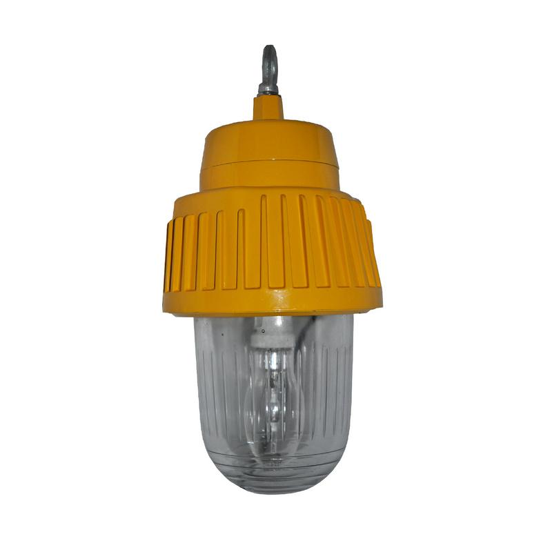 供应海洋王BPC8730一体式防爆灯