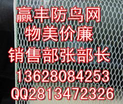 郴州防鸟网,防鸟网