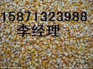 求购玉米大豆高梁棉粕麸皮油糠