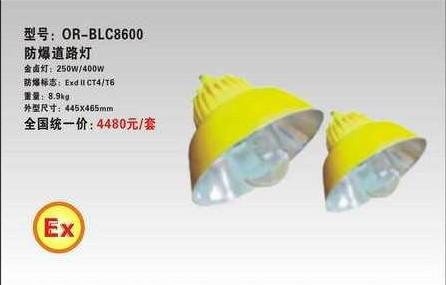 特供BLC8600防爆道路灯