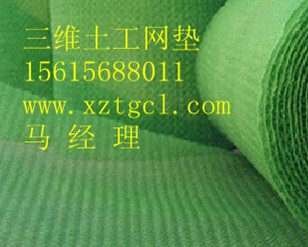 河南三维植被网|三维土工网|塑料三维网,贺岁兴泽提供