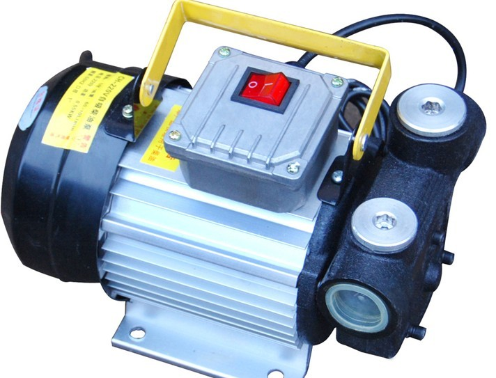 供应220V大功率柴油泵 电动柴油泵 天鹰柴油泵