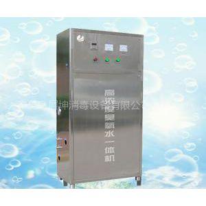 高浓度臭氧水一体机|臭氧一体机|ZCY型氧气源臭氧一体