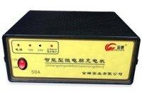金蝉牌智能型微电脑充电机50A (塑壳)