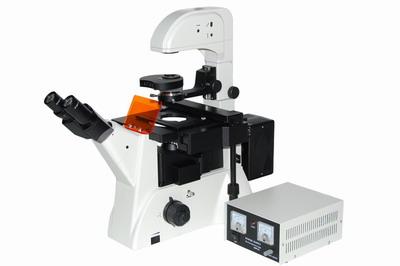 专用蛋白荧光显微镜IM200FL特价