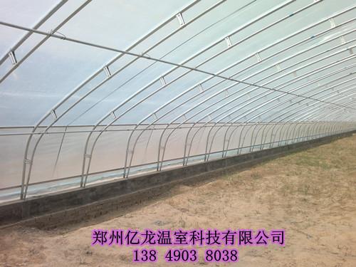 钢结构蔬菜大棚价格_钢结构蔬菜大棚