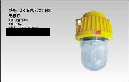 温岭海洋王BPC8731(海洋回馈价)