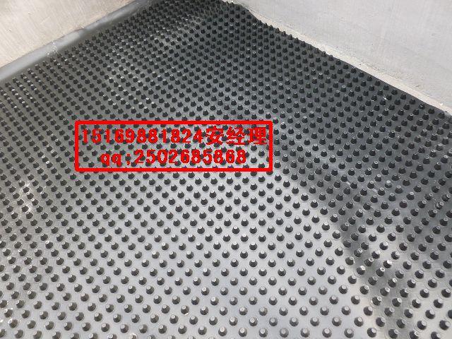 哈尔滨屋顶排水板@车库蓄排水板【规格齐全】
