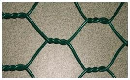 安平县盛华丝网厂 专业生产六角网