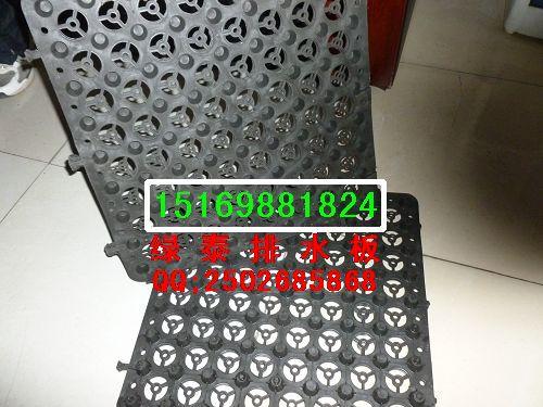 铜陵屋顶绿化蓄排水板【滁州块状蓄排水板】生产厂家