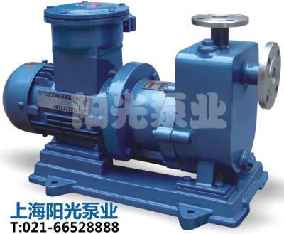 旋涡泵|驱动旋涡泵|CW型磁力驱动旋涡泵