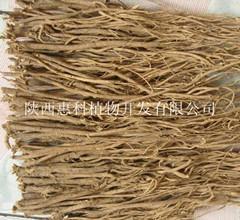 陕西慧科长期供应优质黄芪提取物