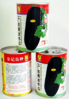 广东黑皮冬瓜种子628-50