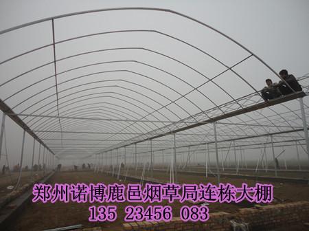 兰州日光温室大棚建设公司 郑州蔬菜大棚造价