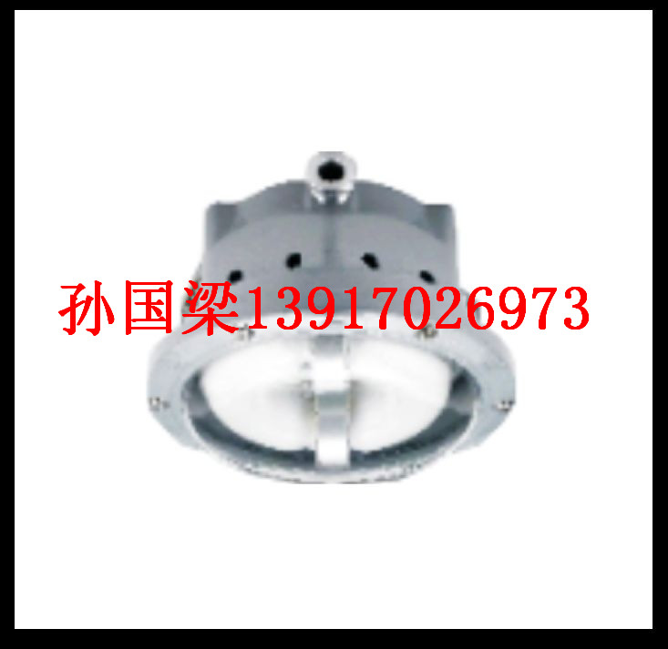 NFC9176 长寿顶灯NFC9176