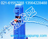 80DL50-20×9DL泵