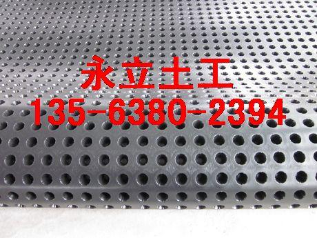 低价供应重庆地下室防渗排水板|绿化排水板