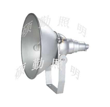 NTC9210 400防震投光灯NTC9210 防震型超强投光灯