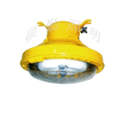 BFC8187 内场LED防爆灯