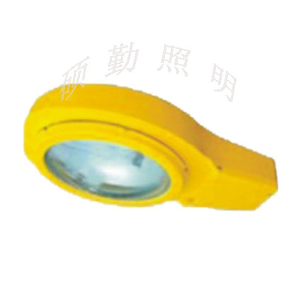 BLC8610防爆防震马路灯 防爆路灯 NFC9100