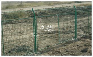 养殖山鸡围网