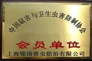 杀跳蚤服务-上海专家灭老鼠-除蟑螂服务-防虫灭鼠-除书虱-灭八角