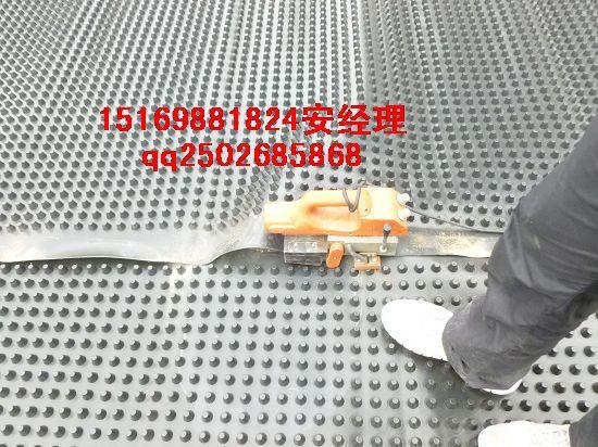 抚州车库种植排水板%萍乡楼顶绿化排水板供应