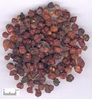 五味子提取物Schisandra Chinensis Extra