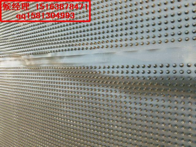 廊坊绿化隔根刺排水板%承德排水板的供应厂家