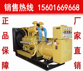 帕金斯20KW柴油发电机组(404D-22TG)