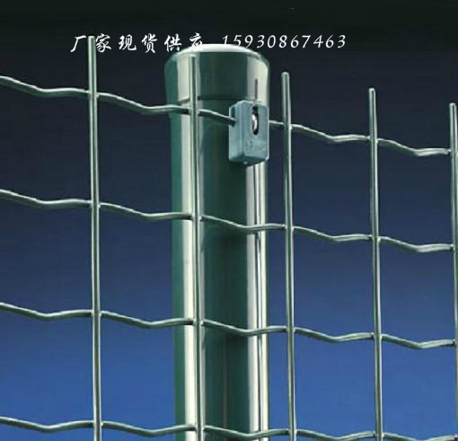 供应养殖网 养殖防护网 焊接铁丝网 SS铁丝网
