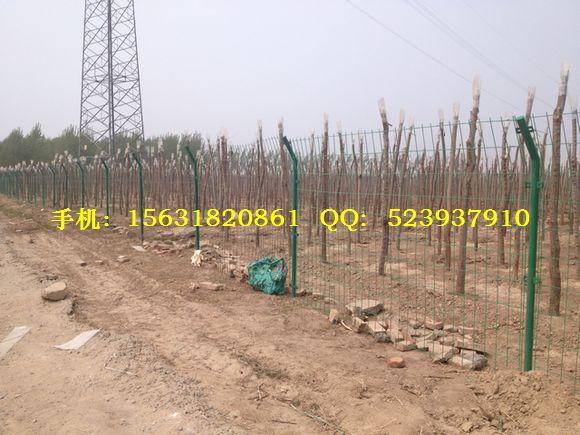 山地围栏网、山地围栏铁丝网、山地围栏铁网