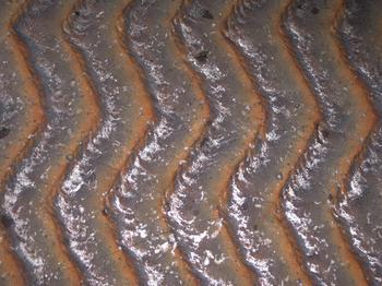 能谱仪分析下的耐磨钢板锡含量