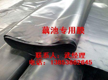 江苏藕池专用防渗材料
