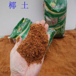 供应椰土椰糠椰粉