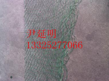 绿化边坡三维土工网垫,三维植被网