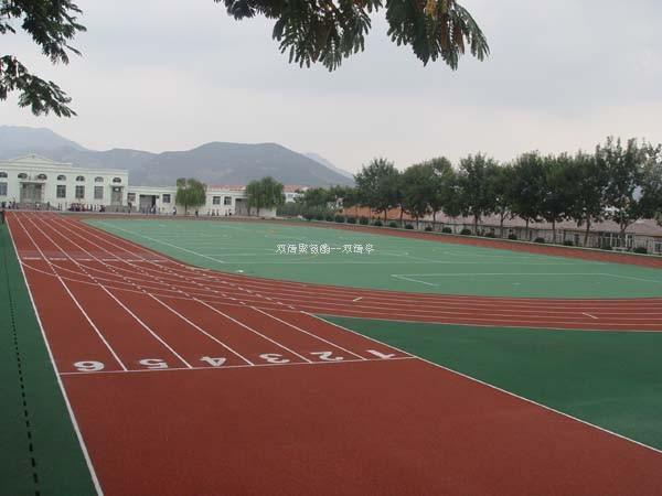 广西幼儿园塑胶跑道