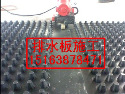 供应哈尔滨防冻排水板¥H60MM排水板的批发市场