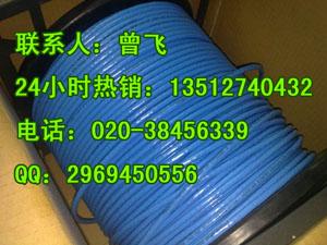 广州安普网线 厂家直销现货批发