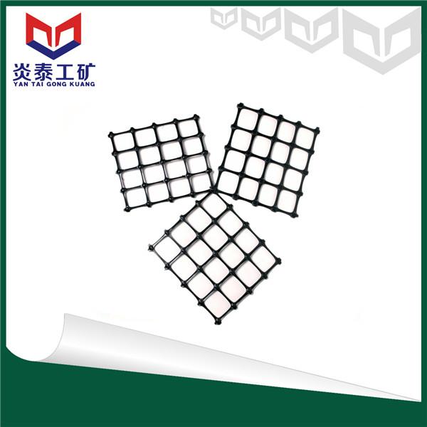 炎泰安全钢塑网
